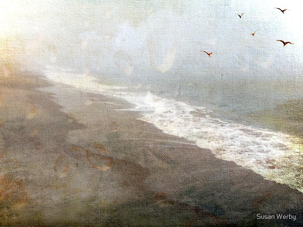 Through the Rain by Susan Werby