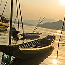Fisherman's boat on the Mekong by MichaelDarn