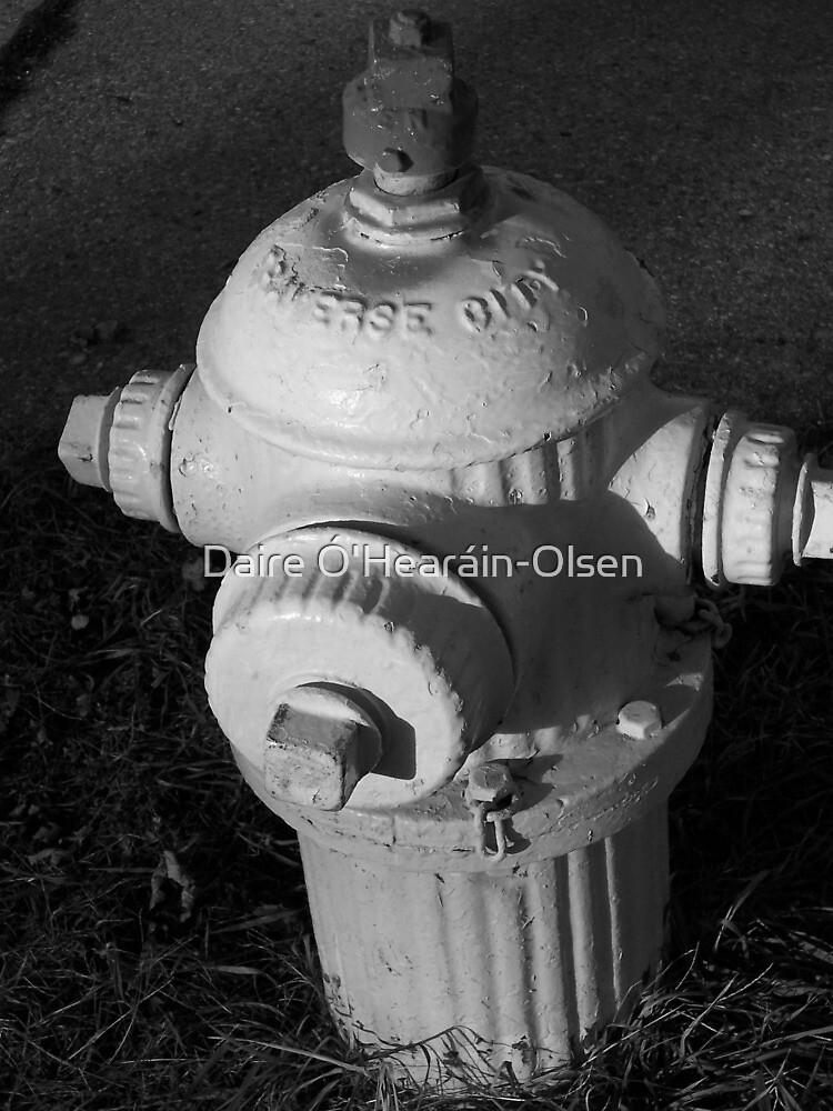 Hydrant I by Daire Ó'Hearáin-Olsen