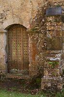 The back door by Jennifer Bradford