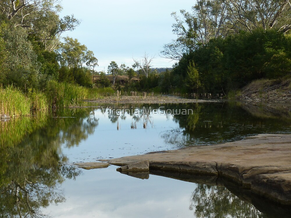 Medway Creek ,Bogantungan Qld.  by Virginia McGowan