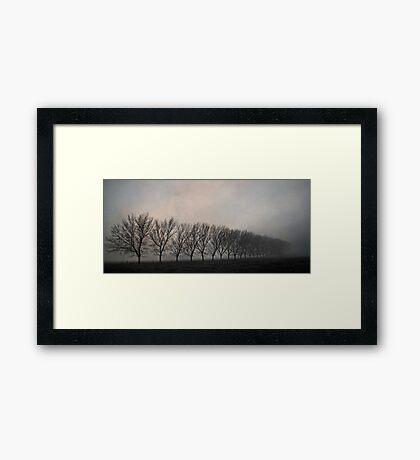 One Foggy Morning Framed Print