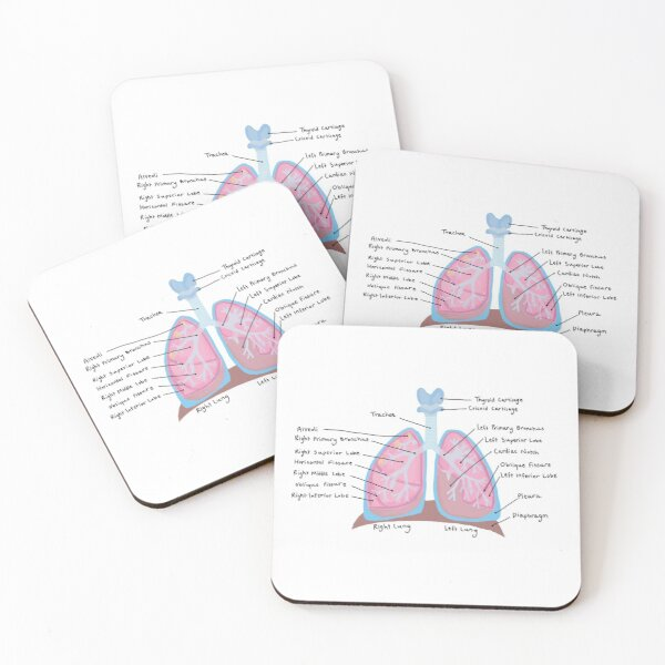 Human Lungs Coasters (Set of 4)