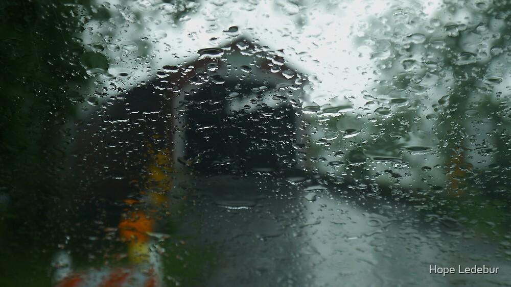 Through the Rain by Hope Ledebur