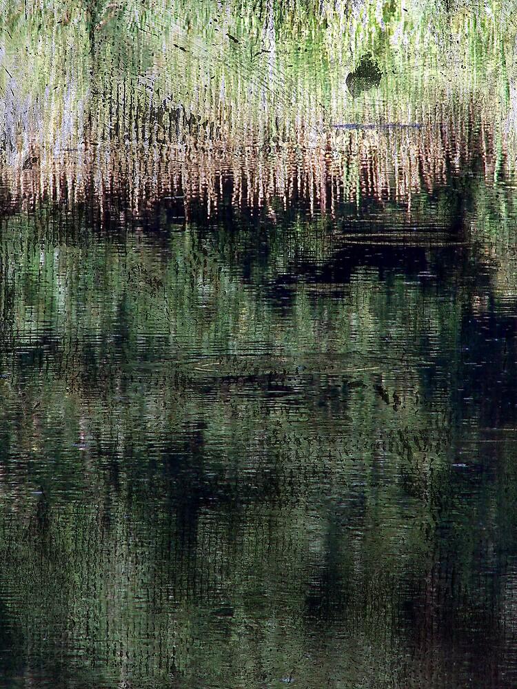 Abstract by angelandspot