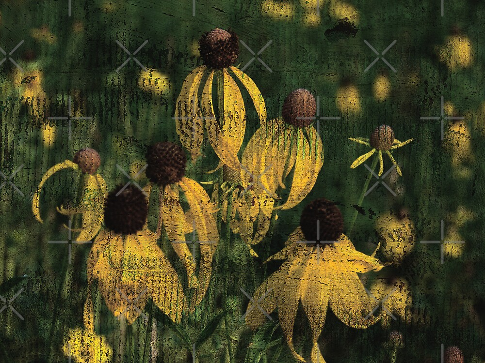 Yellow Wildflowers by angelandspot