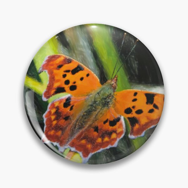 Question Mark Butterfly Pin