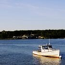 Inland seafod by lumiwa