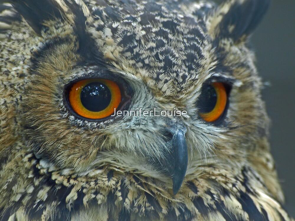 Eurasian Eagle Owl by JenniferLouise