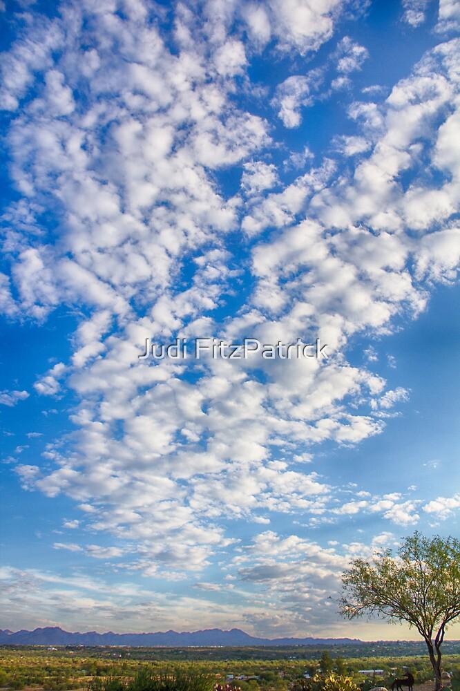Morning Sky by Judi FitzPatrick
