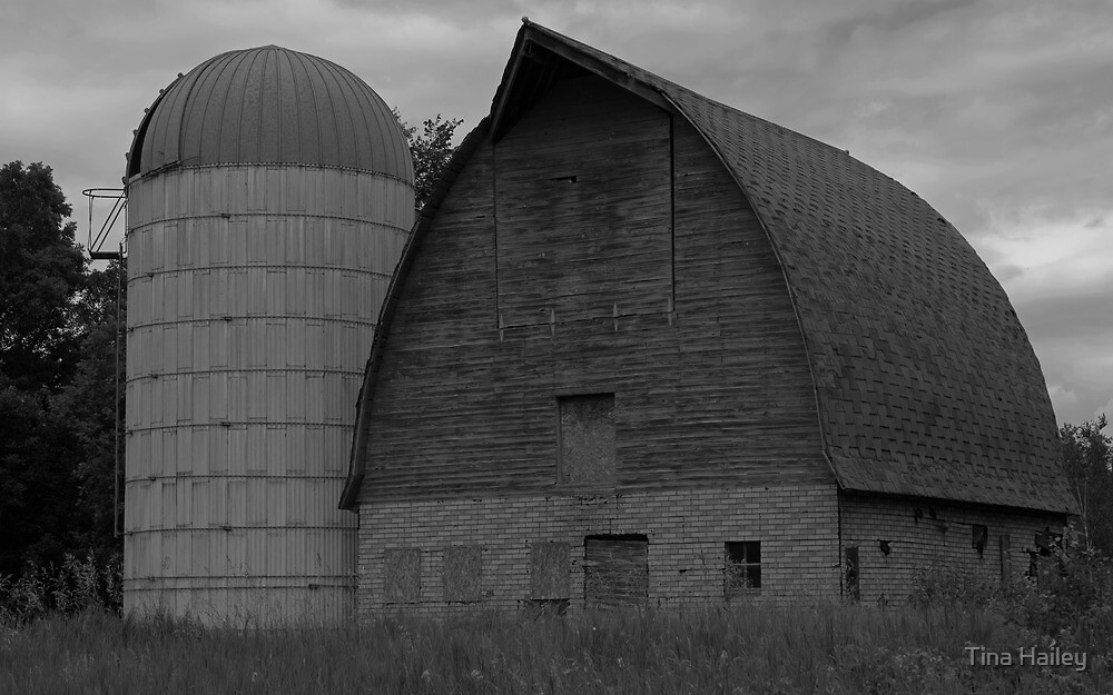 Black and White Barn by Tina Hailey