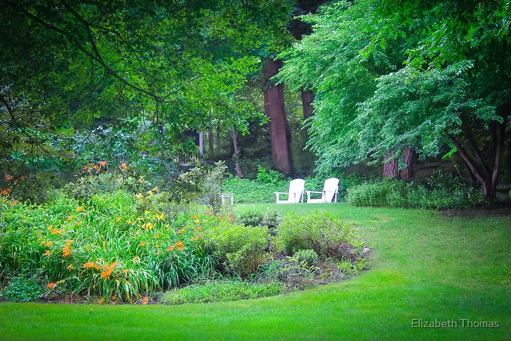 Waiting for Inhabitants on Cape Cod by Elizabeth Thomas
