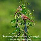 And you are worth far more. . . by Paula Tohline  Calhoun