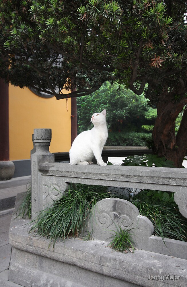 Temple Cat by JennyMajor