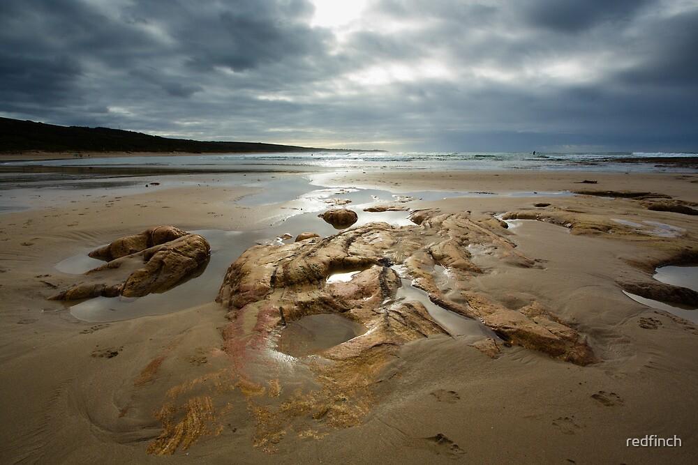 Stormy beach  by redfinch