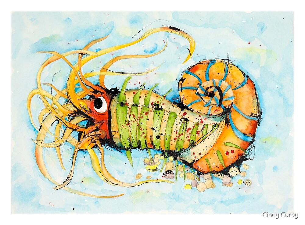 Mr Worm by Cindy Curby