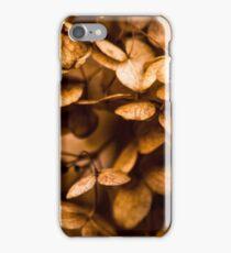Golden Butterflies iPhone Case/Skin