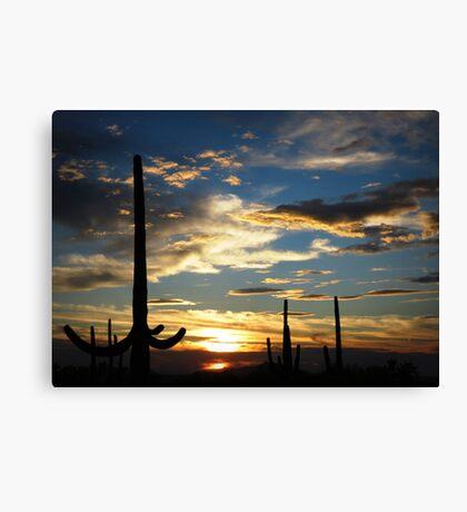 Southern Arizona Sunset Canvas Print
