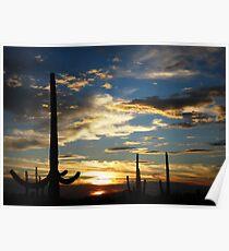 Southern Arizona Sunset Poster