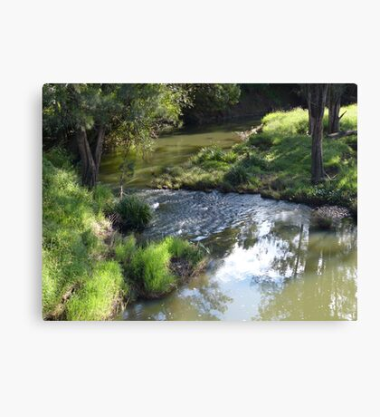 A creek in the country Canvas Print