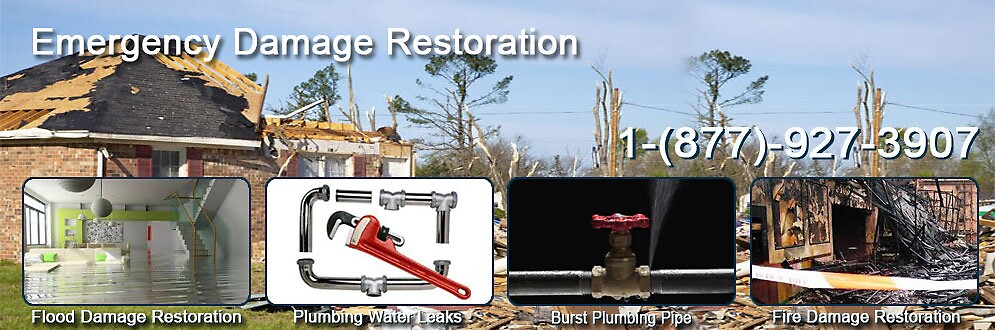 Storm Damage Removal and Restoration Services by dhdseo12345