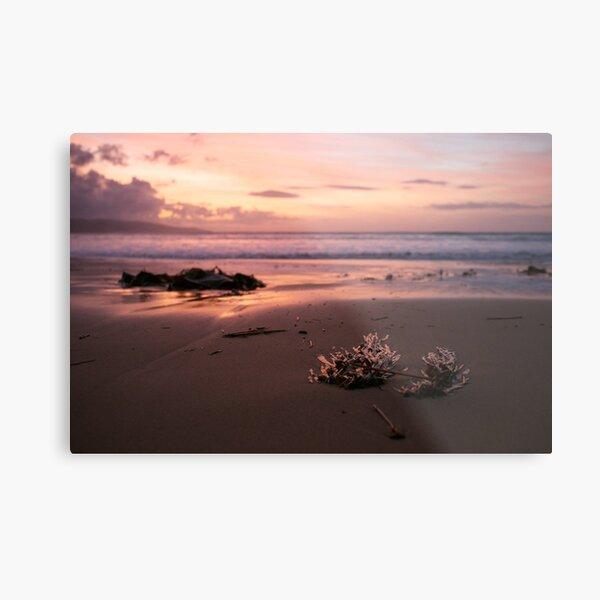 Sunrise in Apollo Bay Metal Print