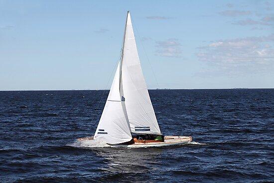 sailing race by mrivserg
