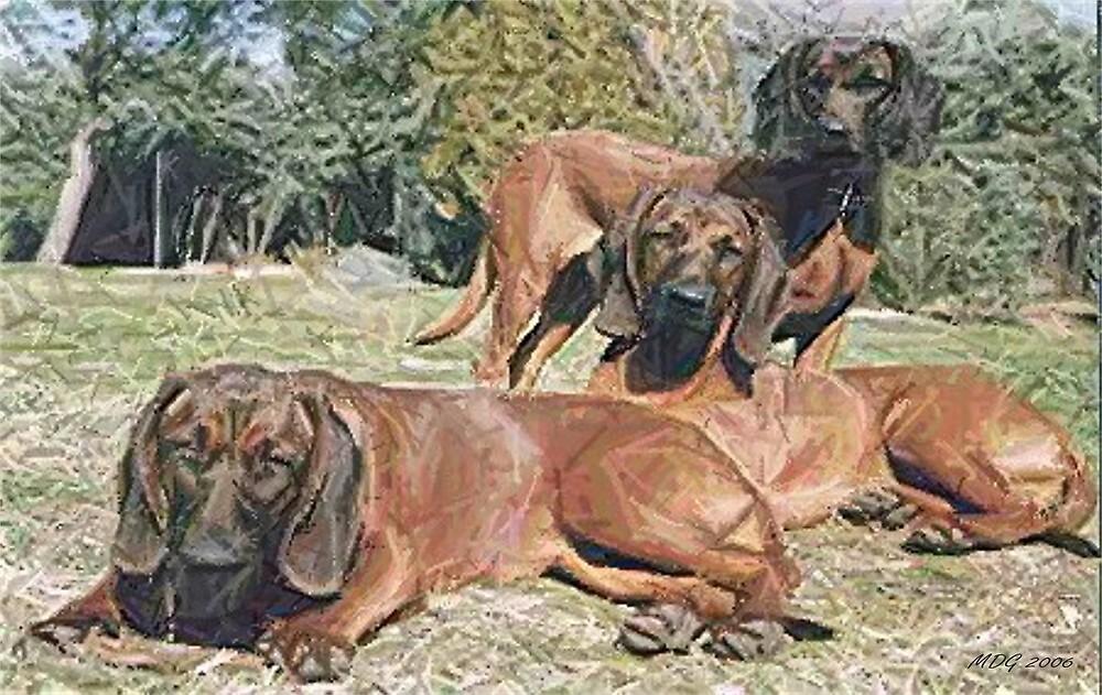 Bavarian Mountain Hound Dog by Oldetimemercan