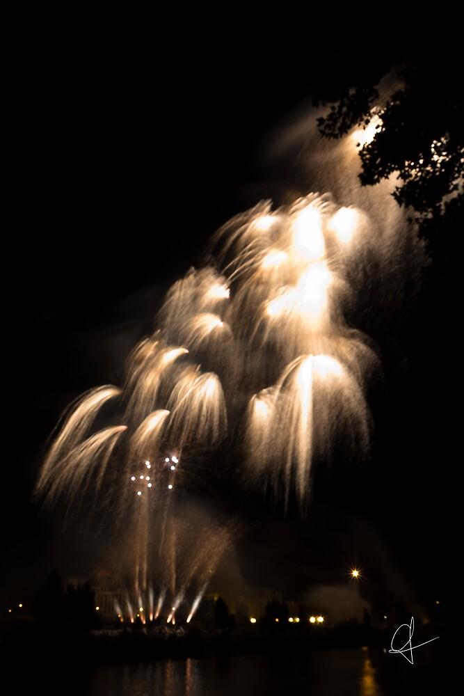 Firework - Light fall by Cédric Charbonnel