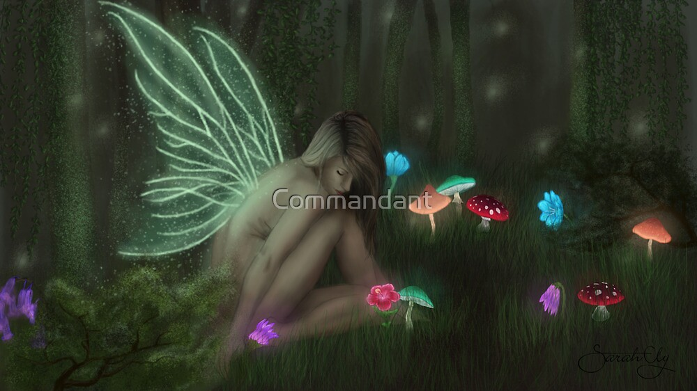 Forest Fairy Print/Poster by Commandant