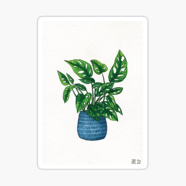 Swiss Cheese Plant Blue pot Sticker