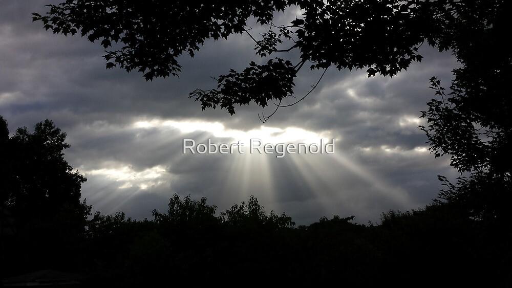 """God's Eye"" by Robert Regenold"
