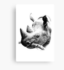 Rhino in Pencil Canvas Print