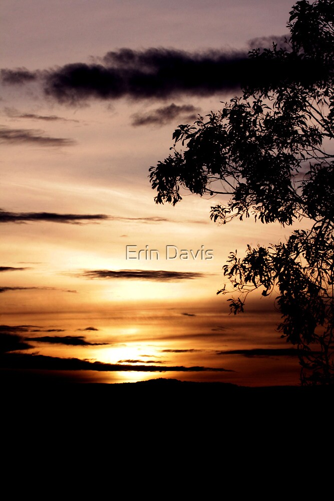 Tranquil Dusk No. 1 by Erin Davis
