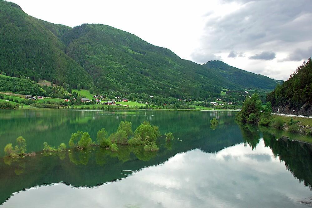 Trees in a lake near Lom - Norway by Arie Koene