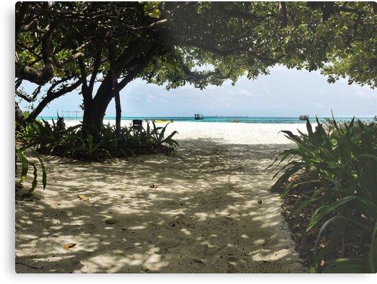 Paradise Beach by Ryan Davison Crisp