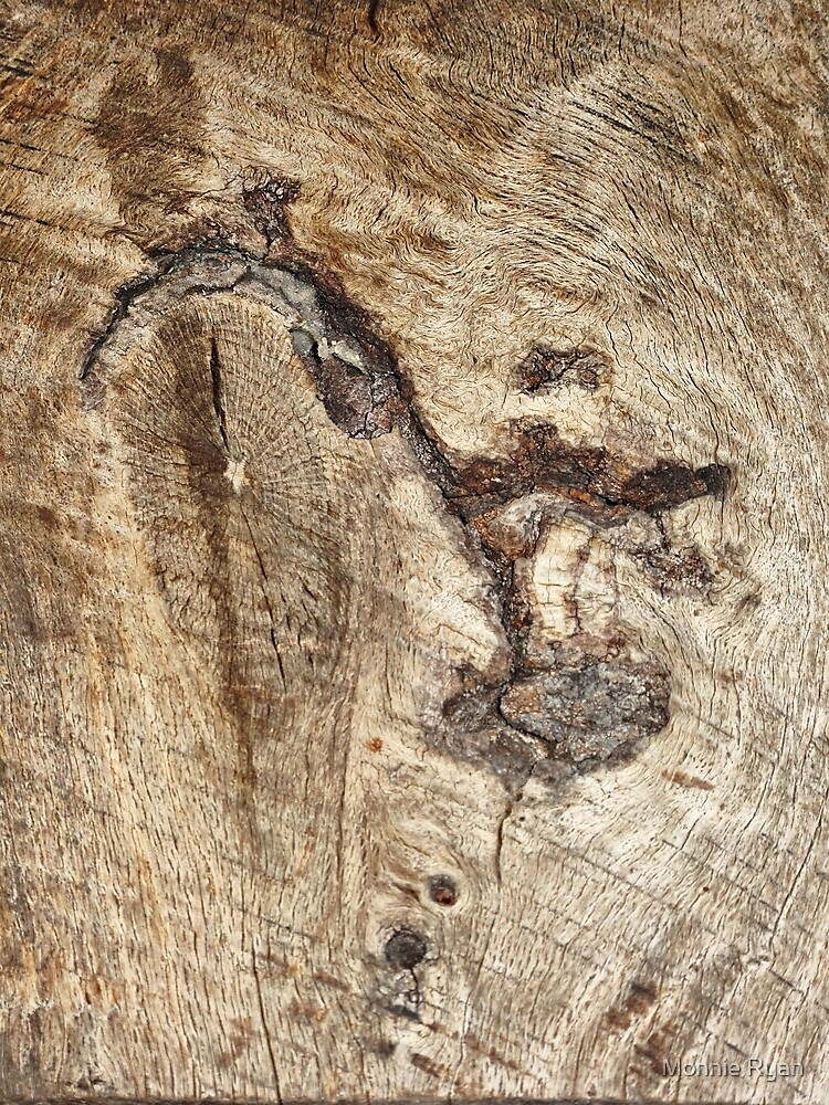 Wood Magic by Monnie Ryan