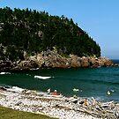 Swim at Black Beach ! by Nancy Richard