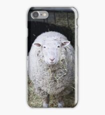 Sheep iPhone Case/Skin