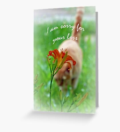 I am Sorry for your Loss Card Greeting Card