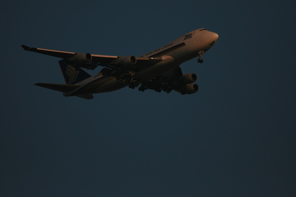Plane in sunny morning by radkrishphoto