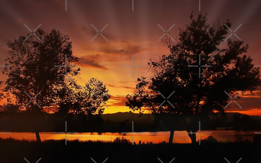 Sunset at Prado by CarolM