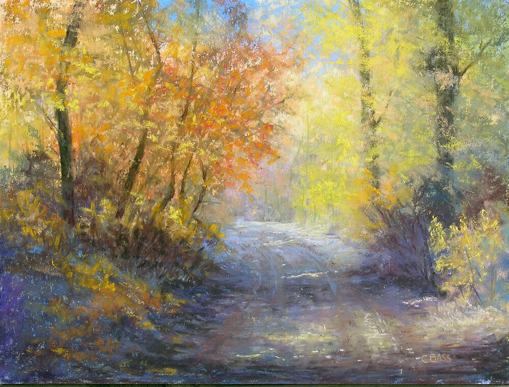 A Tranquil Trail by Christine Bass