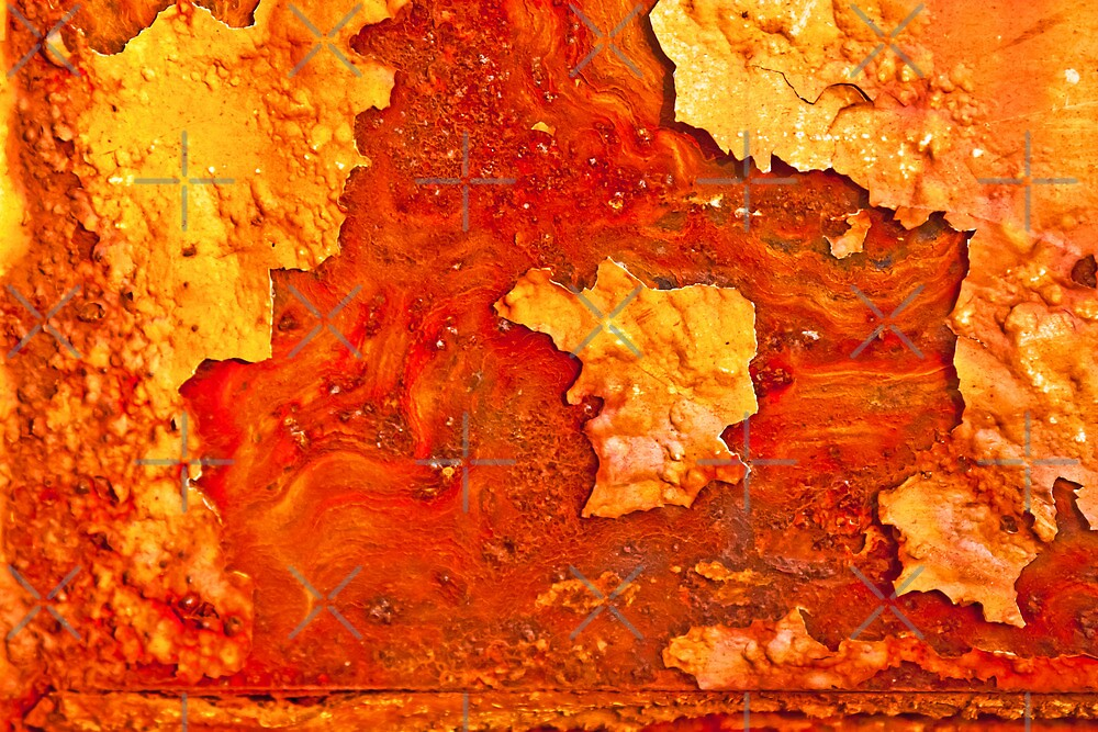 Orange Peel by Lisa Putman