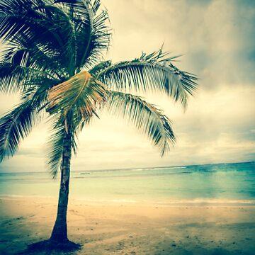 Palm Island by eurodak