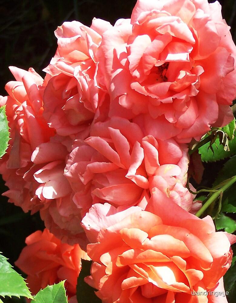 Bouquet by wandringeye