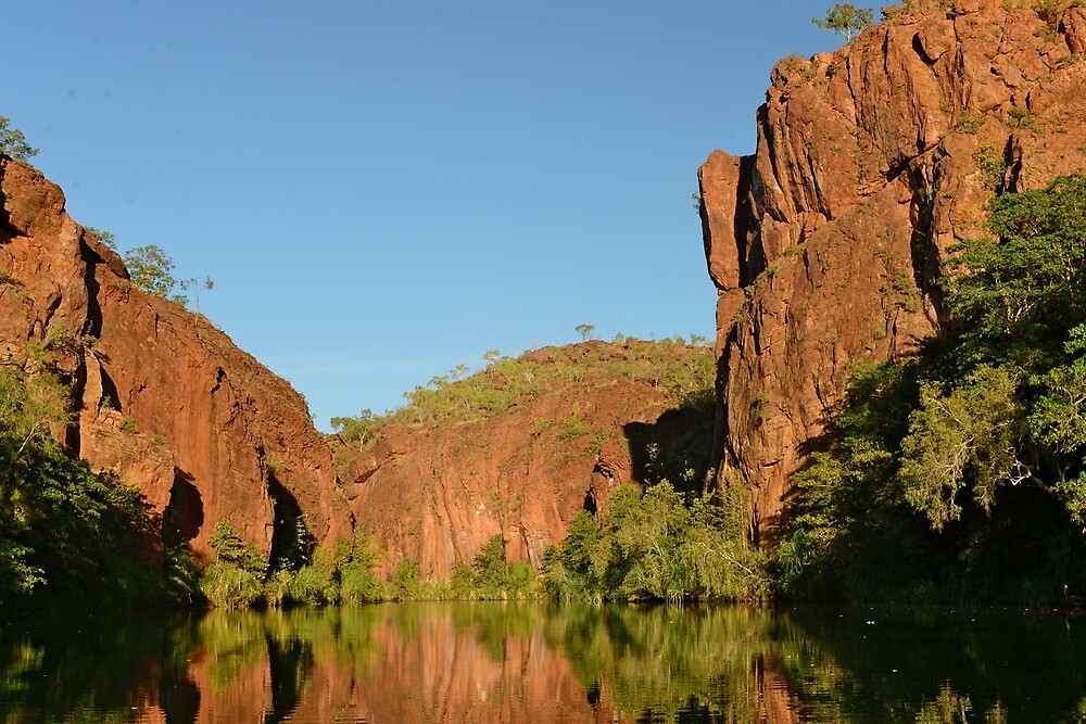 Lawn Hill Gorge in the Boodjamulla National Park  by styles