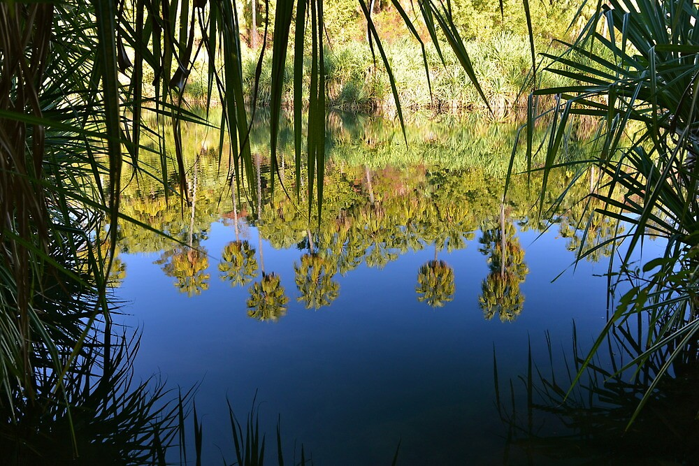 Reflections at Lawn Hill Gorge by styles