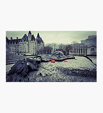 Fallen Heroes Photographic Print