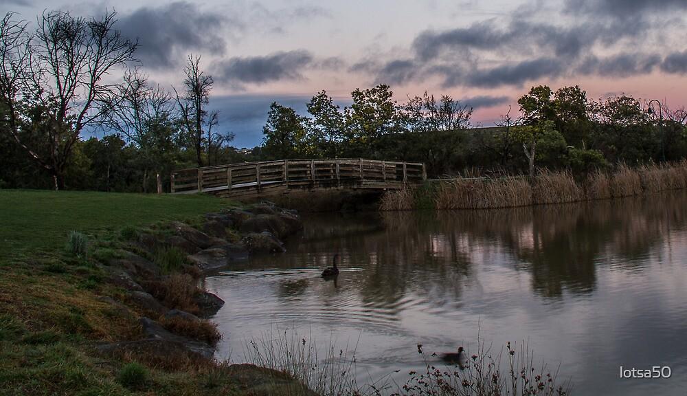 Lilydale Lake by lotsa50
